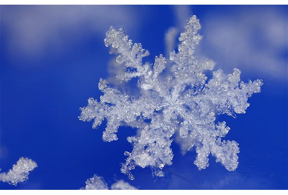 "Case ""Snowflakes and fractals"""