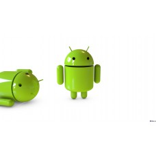 """Case """"What is Android?"""""""